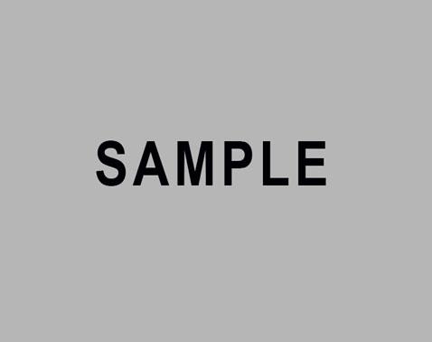 sample_image3